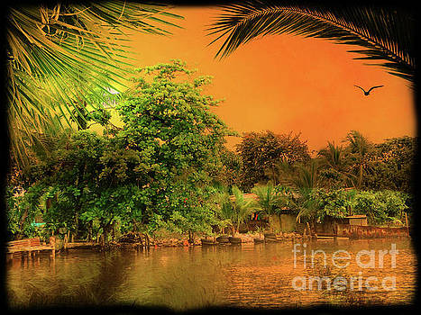 Sunset On A Bocas Del Toro Beach, Panama by Al Bourassa