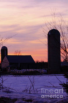 Sunset on a Dairy Farm by Kathy DesJardins