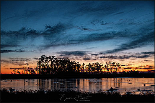 Erika Fawcett - Sunset on Blackwater Refuge