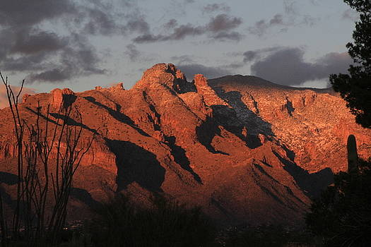 Sunset on Catalinas by Judy C Moses