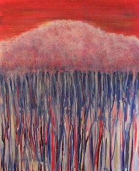 Sunset on Karri by Leonie Higgins Noone