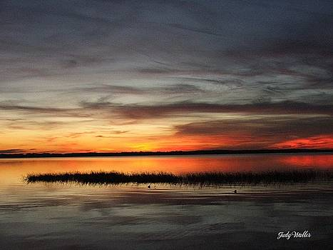 Sunset On Lake Lochloosa by Judy  Waller
