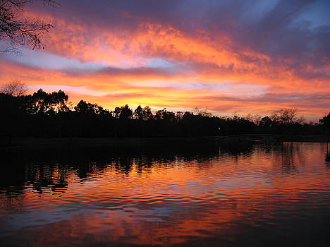 Sunset At the Lake by Natalya Shvetsky
