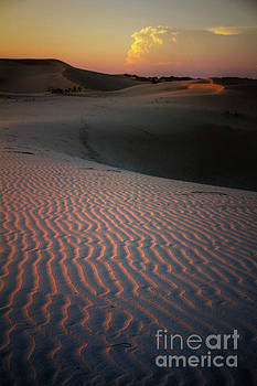 Sunset on Monahans Sandhills by David Daniel