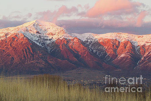 Sunset on Ogden Mountains by Denise Lilly