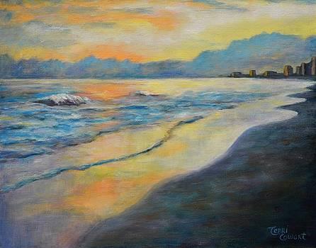 Sunset on the Beach by Terri Cowart