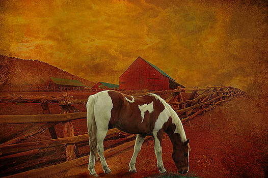 Sunset on the farm by Jeff Burgess