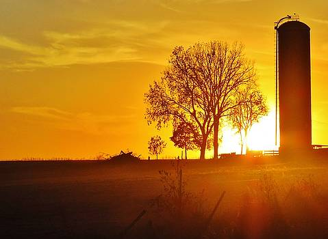 Sunset on the Farm  by Lori Frisch