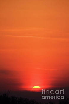 Sunset on the Horizon by Kristi Beers-Mason