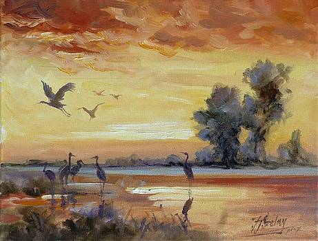 Sunset on the marshes with cranes by Irek Szelag