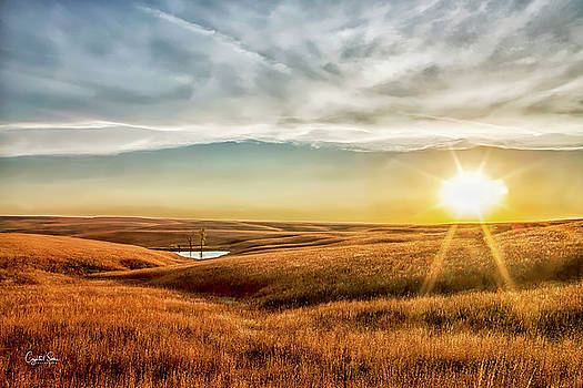 Sunset on the Prairie by Crystal Socha