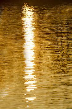 Tim Wilson - Sunset on The Water