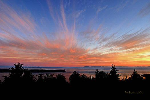 Sunset Over Cypress by Tom Buchanan