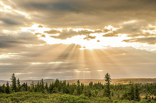 Julie Richie - Sunset Over Dolly Sods 3