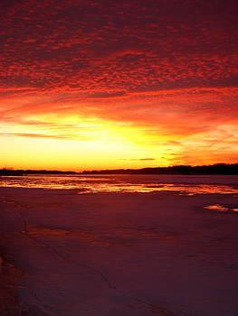 Michelle Calkins - Sunset over Frozen Lake Macatawa
