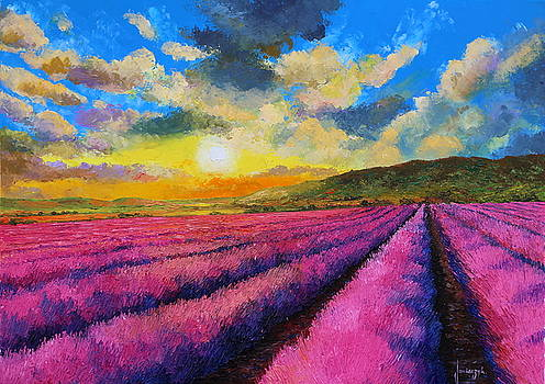 Sunset over lavender by Jean-Marc JANIACZYK