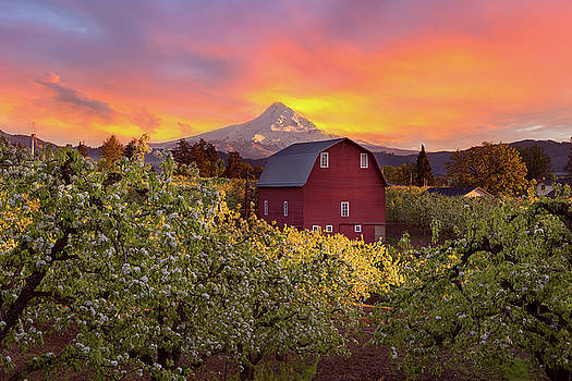 Sunset over Mt Hood and Red Barn by David Gn