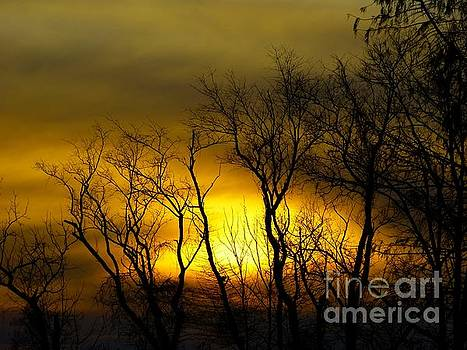 Sunset over our Free Land by Donald C Morgan