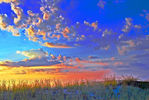 Sunset over sand dune by Bill Jonscher
