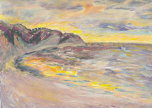 Sunset Over the Gulf by Mary Sedici