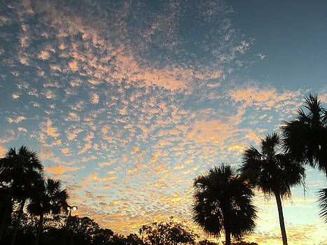 Sunset over the Gulf of Mexico #2 by Susan Grunin