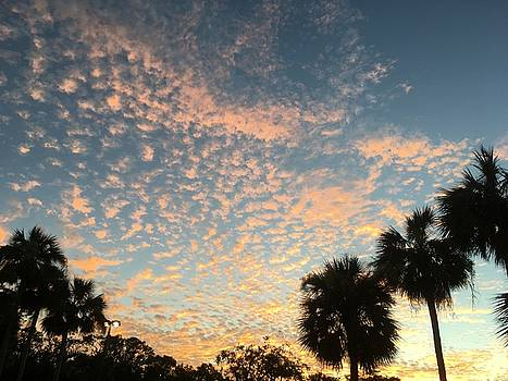 Sunset over the Gulf of Mexico by Susan Grunin