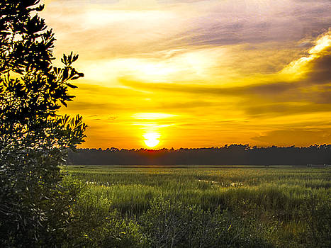 Sunset over the marsh by Terry Shoemaker