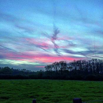 Sunset Over The Woods Last Night Made by Chris Reid