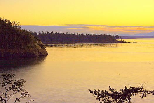 Randall Thomas Stone - Sunset over Widbey Island 8x12