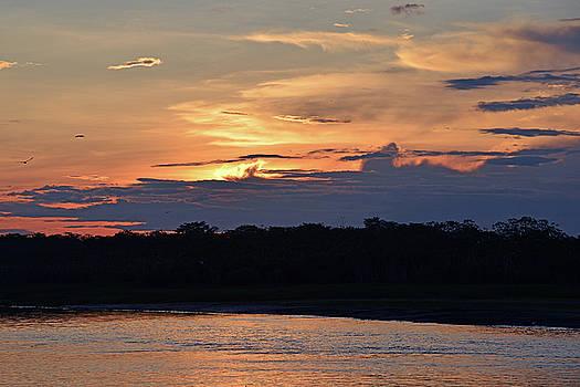 Harvey Barrison - Sunset Panorama in the Reserva Nacional Pacaya Samiria