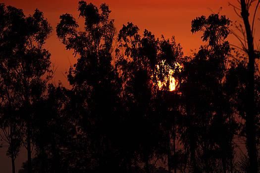 Sunset  by Ramabhadran Thirupattur