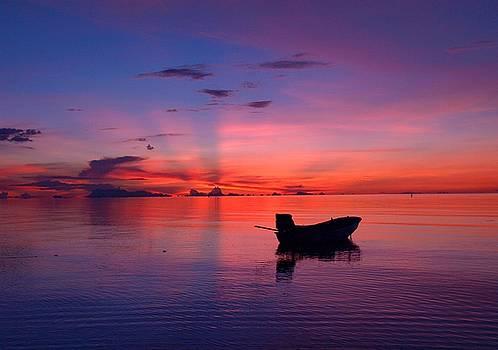 Steven Robiner - Sunset Rays
