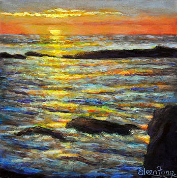 Sunset Reflections 4 by Eileen  Fong