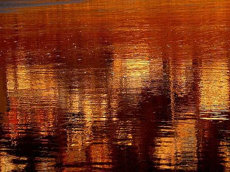 Sunset Reflections by Maggie Barra