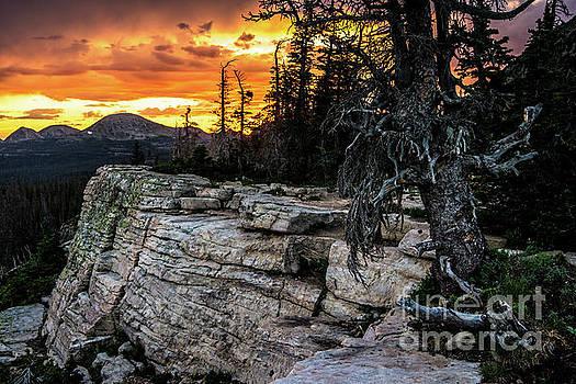 Sunset Ridge - Uinta Mountain Range - Utah by Gary Whitton