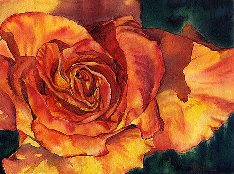Sunset Rose by Leslie Redhead