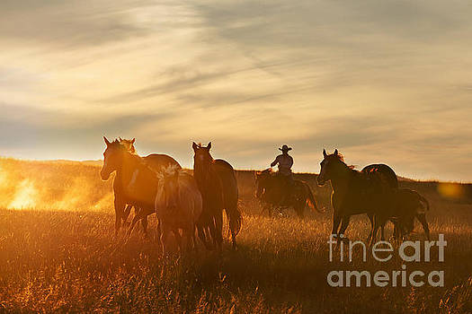 Sunset Roundup by Terri Cage