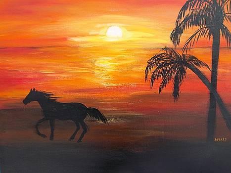 Sunset Run by Aleta Parks
