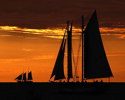 Sunset Sail I by Noah Browning