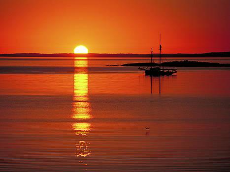 Sunset Sail by Rod Kaye