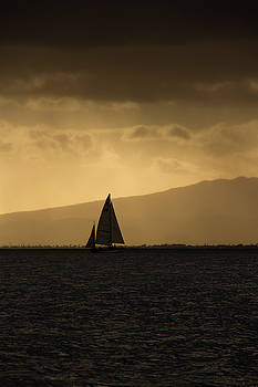 Sunset Sail Vertical by Debby Richards