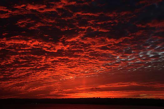 Sunset San Diego 2 by Ni Zhu