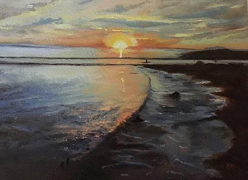 Sunset Sea by Joyce Snyder
