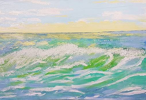 Sunset Seascape 6 by Judi Goodwin