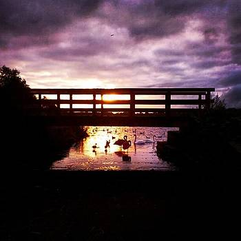 #sunset #silhouette  #bridge #bolton by Jennie Davies