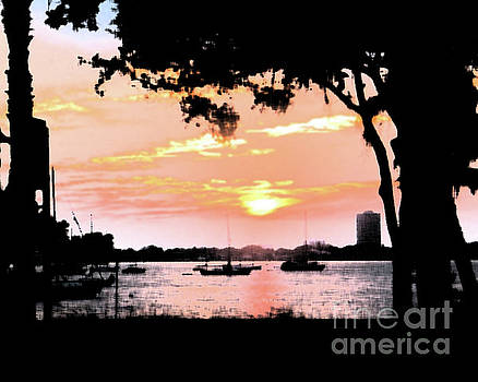 Sunset Silhouette by Karen Francis