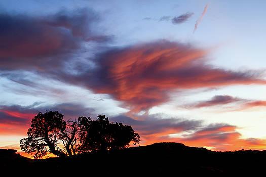 Sunset Silhouette by Trish VanHousen