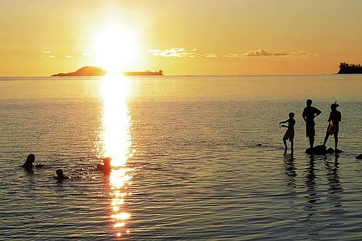 Jonny Jelinek - Sunset Silhouettes