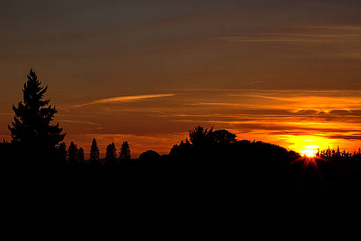Sunset silhoutte by Hans Franchesco