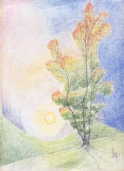 Sunset Solitude by Lori Michelle Adams Hunter